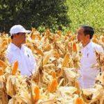 Jokowi Janji Indramayu tetap Lumbung Padi