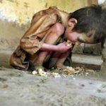 ADB : 22 Juta Penduduk Indonesia Kelaparan