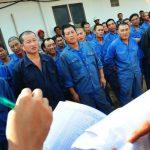 Ratusan TKA China Masuk ke Pulau Bintan