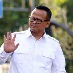 Terungkap Edhy Prabowo 'Paksa' Bawahan Tanda Tangan Izin Ekspor Benur